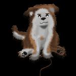 Mascota Decofloor Group